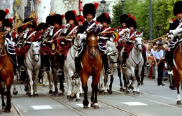 Đội kỵ binh ngự lâm của Hoàng gia Bỉ