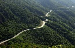 Đèo Hải Vân - Cung đường đẹp nhất Việt Nam