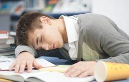 Tại sao trẻ ngại dậy đi học vào buổi sáng?