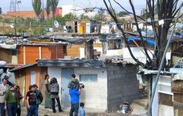 Canada Real - Khu ổ chuột lớn nhất châu Âu