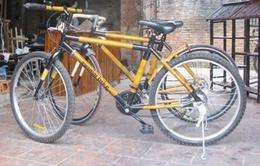 """Xe đạp khung tre - """"Đặc sản"""" mới của du lịch Hội An"""