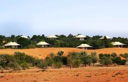 Du lịch sa mạc - Trải nghiệm mới tại Dubai