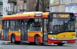 Khám phá hệ thống giao thông công cộng miễn phí ở Ba Lan