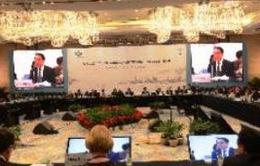 Khai mạc Hội nghị Bộ trưởng Thương mại APEC lần thứ 20