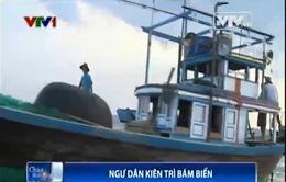 Bất chấp căng thẳng trên Biển Đông, ngư dân kiên quyết bám biển