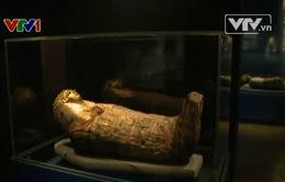Công nghệ hé mở nhiều bí mật của người Ai Cập cổ đại