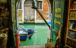 Cửa hàng sách dưới nước ở Venice, Italy