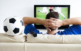 Dịch vụ cho thuê tivi xem World Cup