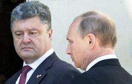 Tổng thống Nga gặp Tổng thống đắc cử Ukraine