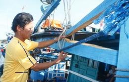 Ngư dân Quảng Nam can trường giữ biển