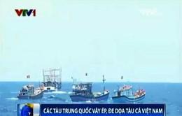 Tình hình Biển Đông ngày 7/6: Các tàu Trung Quốc vây ép, đe dọa tàu cá Việt Nam