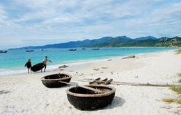 Du lịch biển đảo - Xu hướng mới của du khách Việt Nam