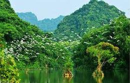 Khám phá thiên đường du lịch Thung Nham
