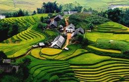 Việt Nam luôn là điểm đến an toàn, thân thiện, hấp dẫn