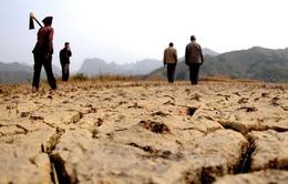 Triều Tiên đối mặt đợt hạn hán nghiêm trọng nhất hơn 10 năm qua