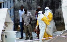 Dịch bệnh Ebola: Hậu quả sẽ thảm khốc nếu không kiểm soát tốt