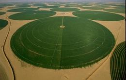 Những kỳ quan sa mạc ấn tượng nhất thế giới