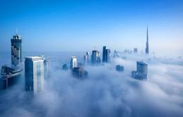 """Ngắm """"thành phố vàng"""" đẹp mơ màng trong sương sớm"""