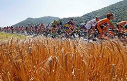 Tour de France 2013 qua ảnh: Những cú nước rút ngoạn mục