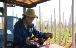 Phùng Văn Nhiên - Chàng cầu thủ thích nghề nông