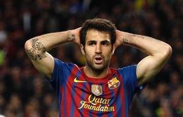 84% CĐV Barcelona muốn CLB bán Cesc Fabregas
