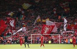 Premier League: Liverpool vô địch về thu nhập