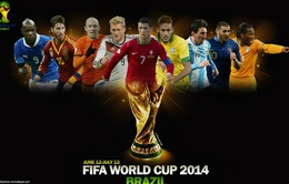 Thông cáo báo chí công bố kế hoạch phát sóng World Cup 2014 của Đài THVN