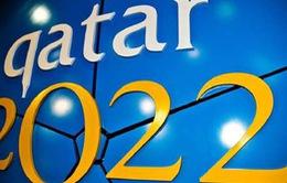 FIFA có thể tước quyền đăng cai World Cup 2022 của Qatar vì gian lận