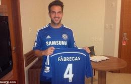 CHÍNH THỨC: Cesc Fabregas gia nhập Chelsea ngay trước giờ khai mạc World Cup 2014