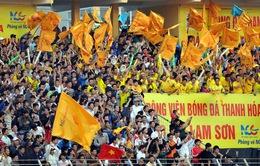 Thể thao Việt Nam lặng lẽ mùa World Cup