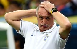 Brazil sa thải HLV Scolari?
