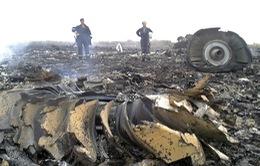 Chùm ảnh: Hiện trường thảm khốc vụ tai nạn máy bay của Malaysia Airlines