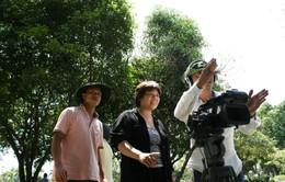 Người viết khúc bi tráng Biệt động Sài Gòn
