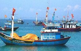 Tuần lễ biển và hải đảo Việt Nam 2014 - Chung tay bảo vệ đại dương xanh