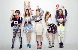 Nhóm nhạc hàng đầu 4Minute chuẩn bị tái xuất