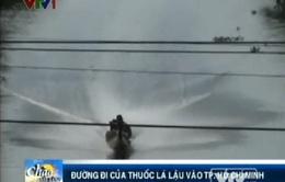 VIDEO: Thâm nhập đường dây thuốc lá lậu vào TP.HCM