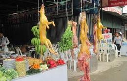 VIDEO:  Vì sao thịt thú rừng bán tràn lan tại cửa Phật?