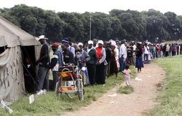 Zimbabwe trưng cầu dự thảo Hiến pháp mới