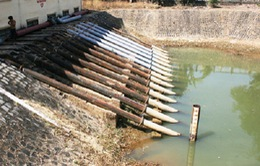 Quảng Nam: Nan giải nguồn nước bị nhiễm mặn