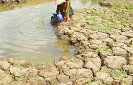 Miền Trung và Nam Bộ khô hạn nghiêm trọng