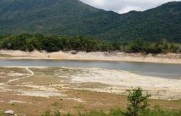 Bình Định: Hạn nặng, 140 hồ chứa nước khô kiệt