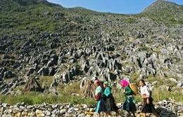 Hôm nay (11/4), công bố quy hoạch Cao nguyên đá Đồng Văn
