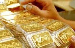Hôm nay (17/4), tiếp tục đấu thầu 40.000 lượng vàng