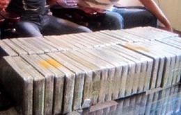 Bắt 2 vụ ma túy lớn tại Bắc Giang, Lạng  Sơn