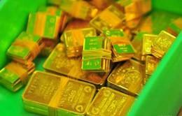 Sáng nay (23/4), NHNN đấu thầu tiếp 26.000 lượng vàng