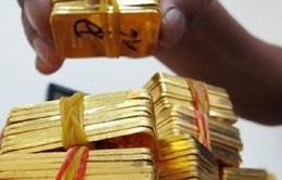 25.700 lượng vàng đấu thầu thành công trong phiên thứ 13