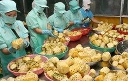 Rau quả Việt Nam tiếp tục được xuất khẩu sang châu Âu