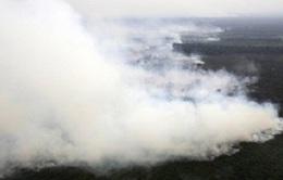 Sương mù phủ kín Côn Đảo
