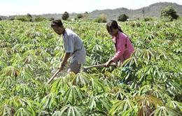 Gia hạn dự án Thí điểm giảm nghèo tại huyện Ia Pa
