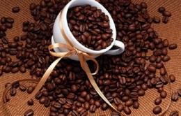 Đường, cà phê thế giới đồng loạt tăng giá